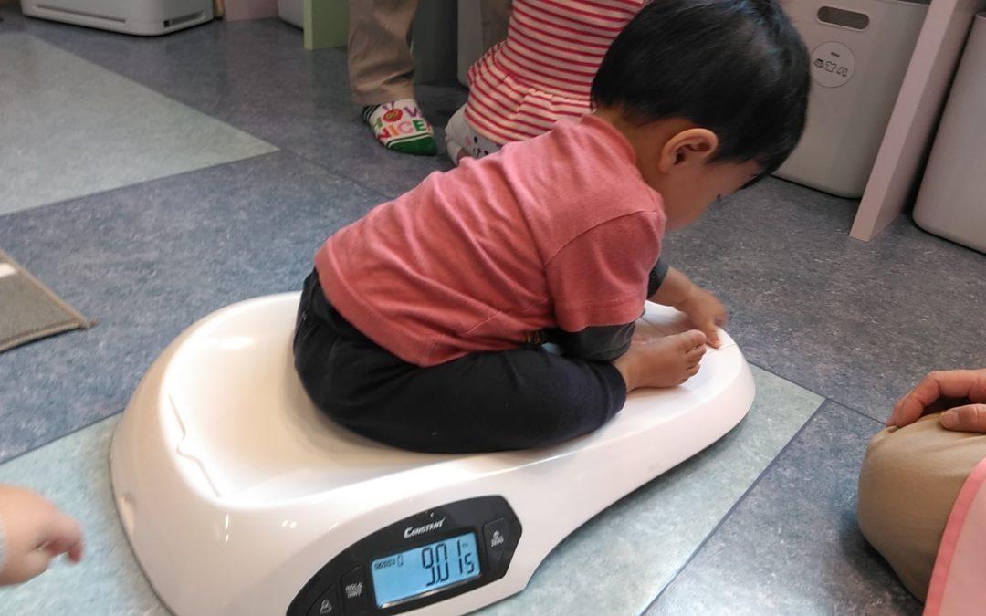 身体測定 かに組