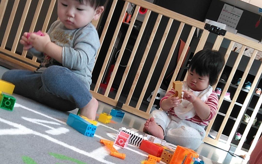 積み木 ブロック遊び かに組